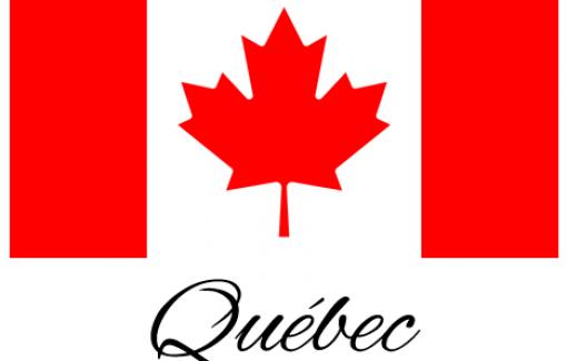 Vous êtes une entreprise wallonne avec pour ambition de cibler un nouveau marché, par exemple le Québec ?